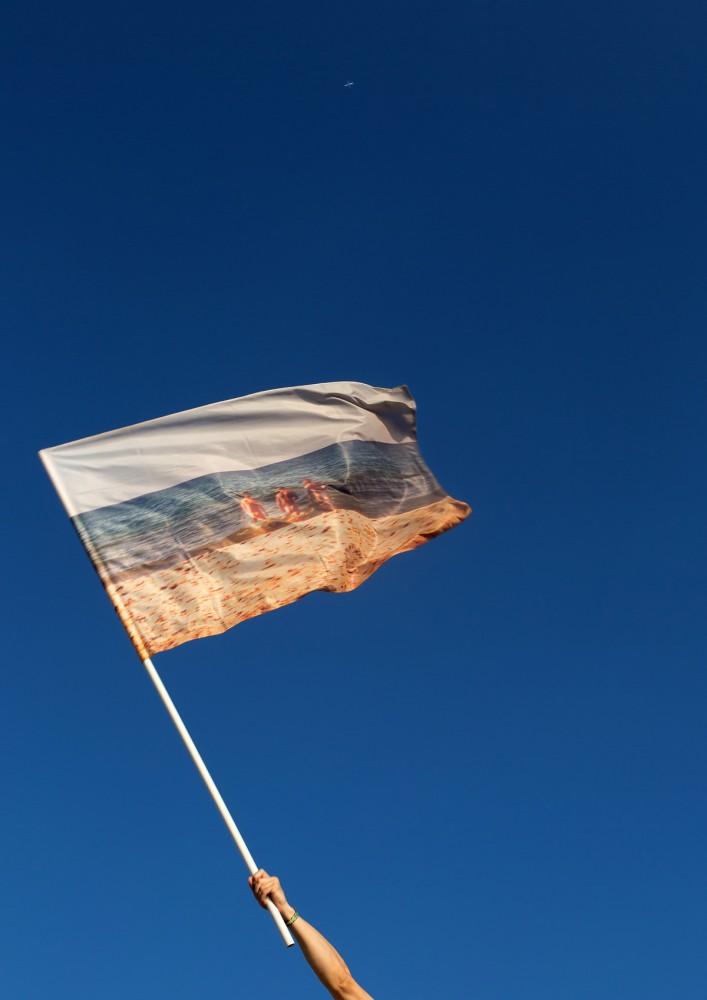 new_flags_anton_zabrodin_poster